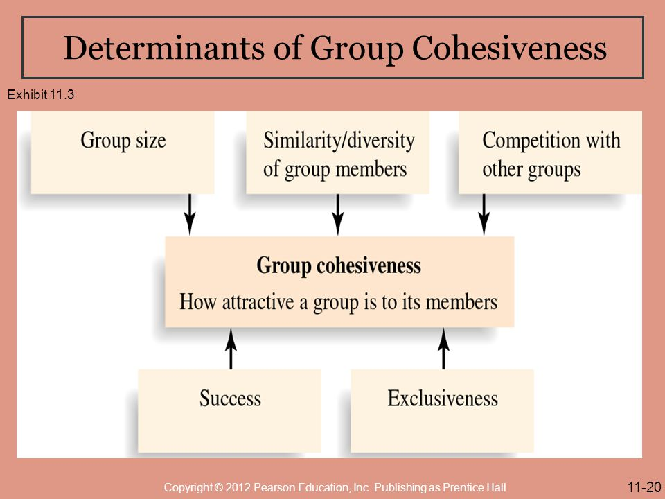 Determinants of Group Cohesiveness