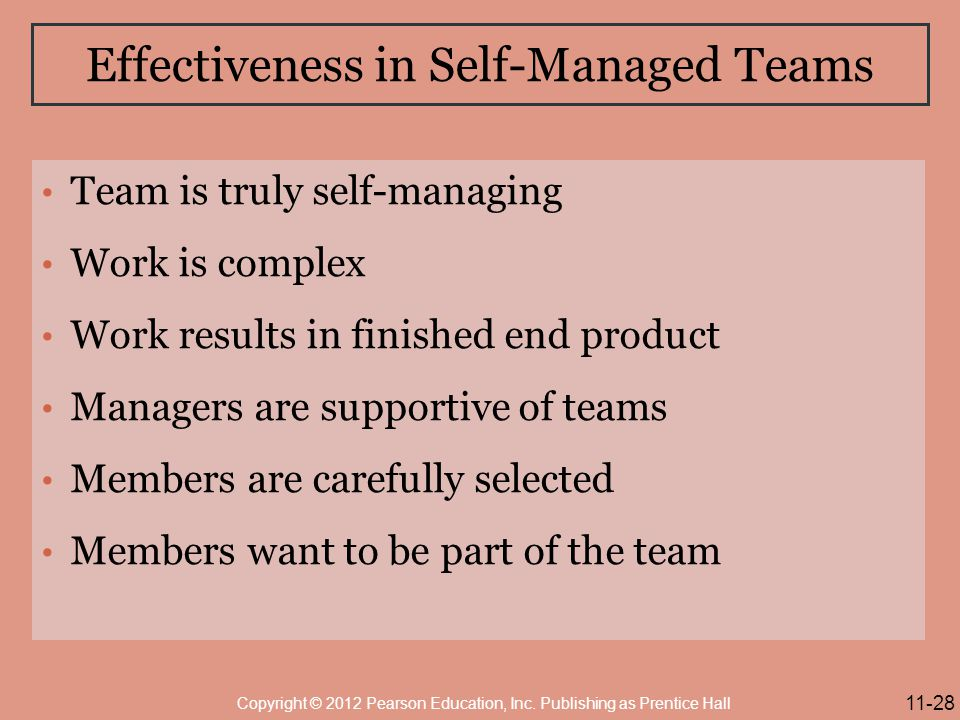 Effectiveness in Self-Managed Teams