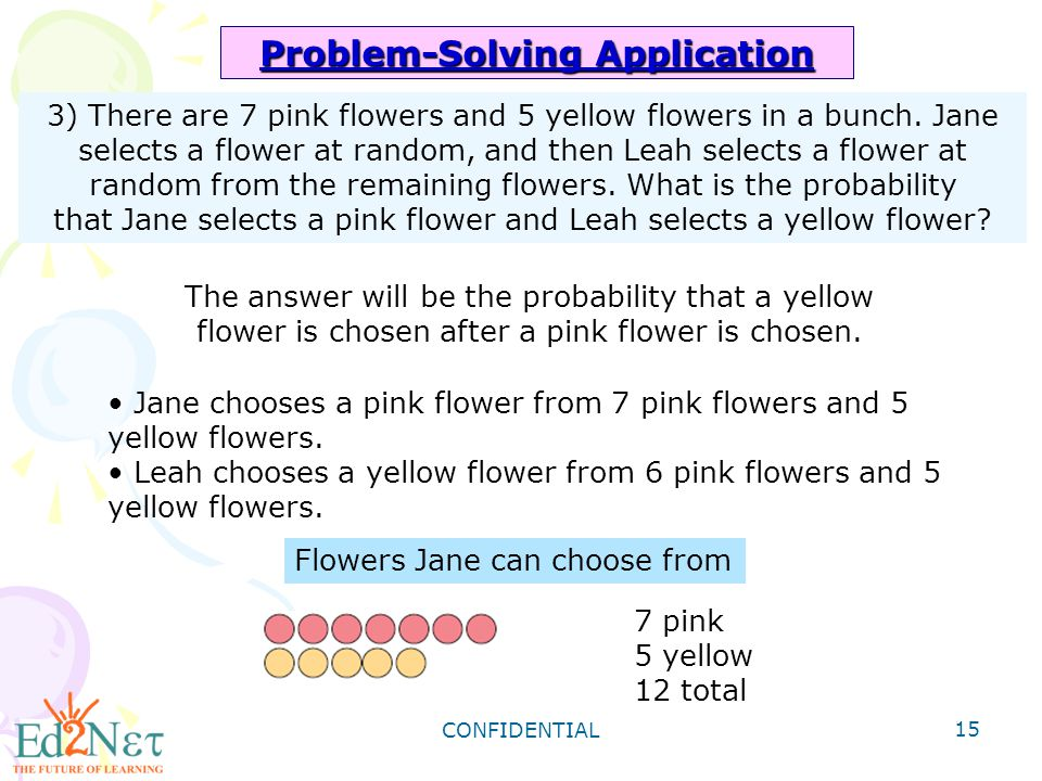 Problem-Solving Application