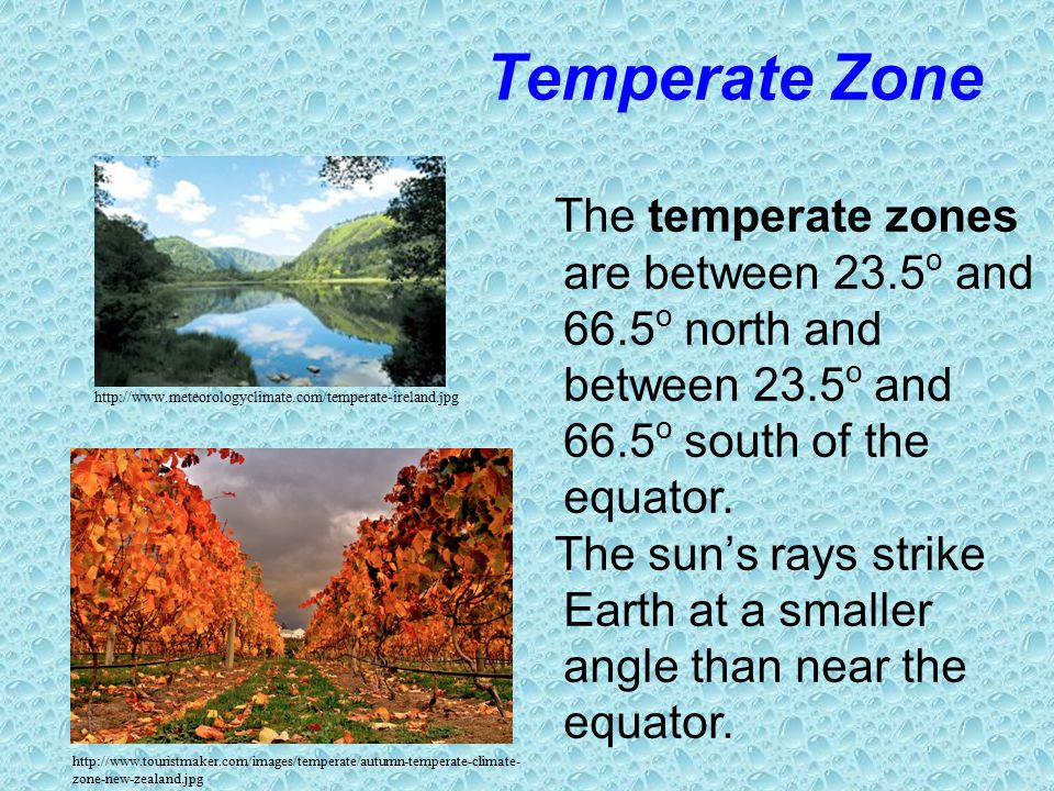 Chapter 252 climate zones ppt video online download 11 temperate thecheapjerseys Image collections