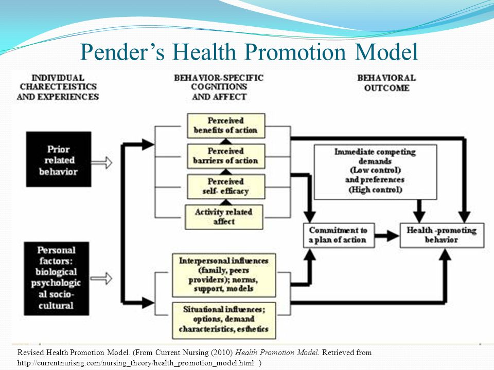 Image result for health promotion model