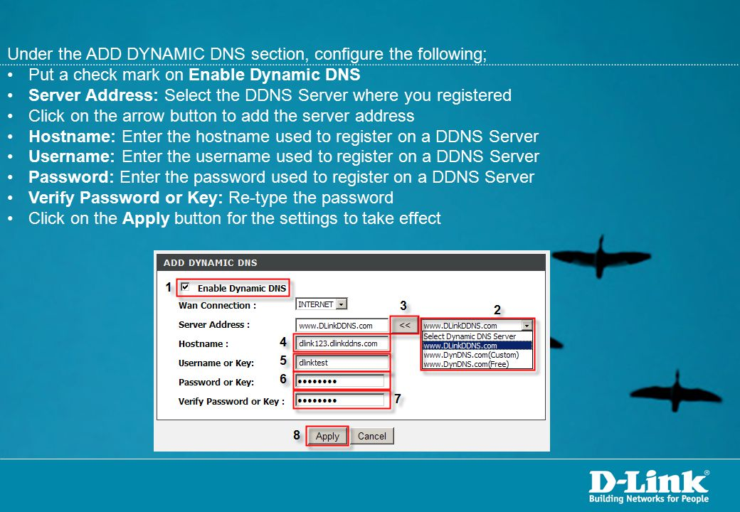 Under the ADD DYNAMIC DNS section, configure the following;