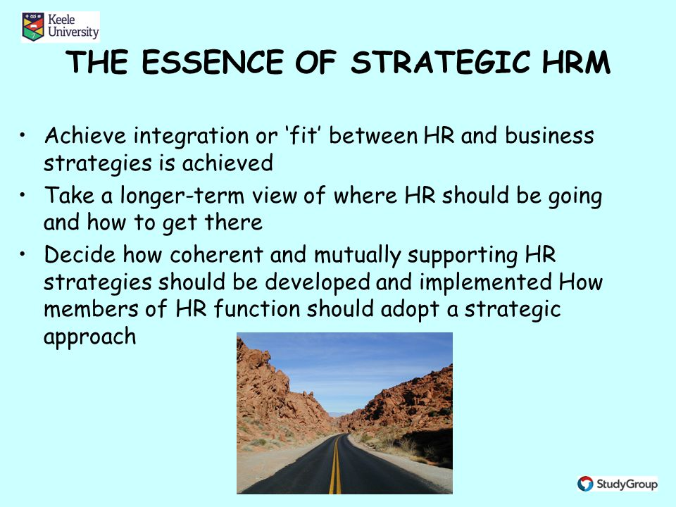 strategic human resource management ppt video online downloadthe essence of strategic hrm