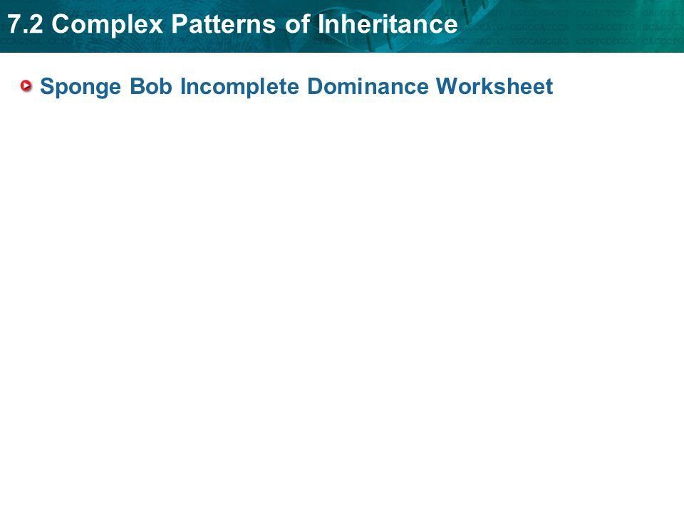 In plete Dominance And Codominance Worksheet Answers   Free furthermore Biology Recent Questions   Chegg as well  additionally In plete Dominance and Codominance Worksheet Answers ly in addition Multiple Alleles Blood Type Worksheet Answers Inspirational furthermore Breakdown cover  Insurance  Route Planner   AA in addition  in addition  besides In plete Dominance And Codominance Worksheet The best worksheets furthermore  in addition Biology Recent Questions   Chegg additionally Week 24  Thursday  March 2  2017   Miss Durant's Science Cl besides Color Blindness Ge ics   Best Blind 2018 besides In plete Dominance And Codominance Teaching Resources   Teachers additionally Biology Recent Questions   Chegg furthermore . on incomplete dominance and codominance worksheet