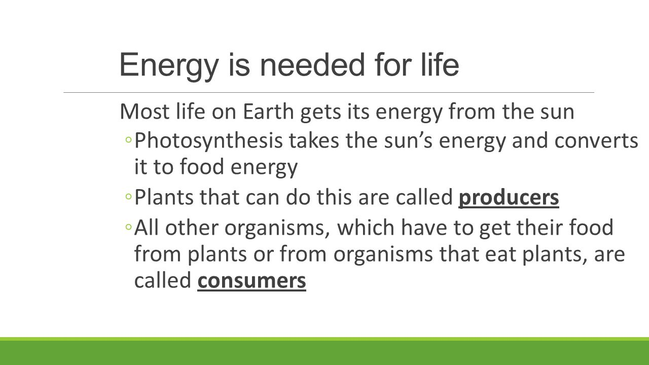 Energy is needed for life
