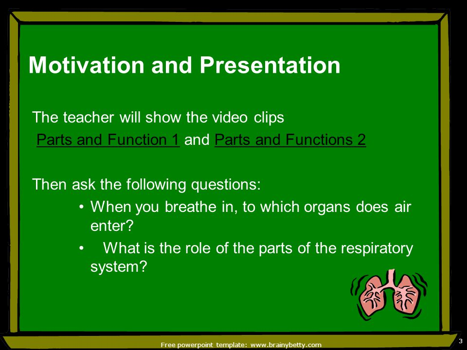 Parts of the Respiratory System and Its Function - ppt video