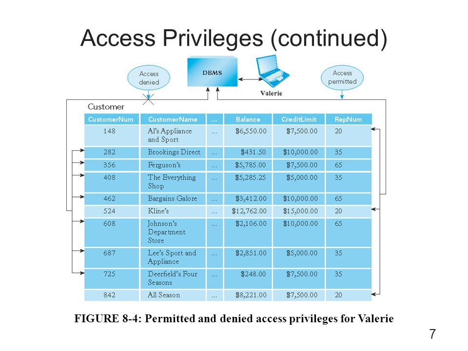 Access Privileges (continued)