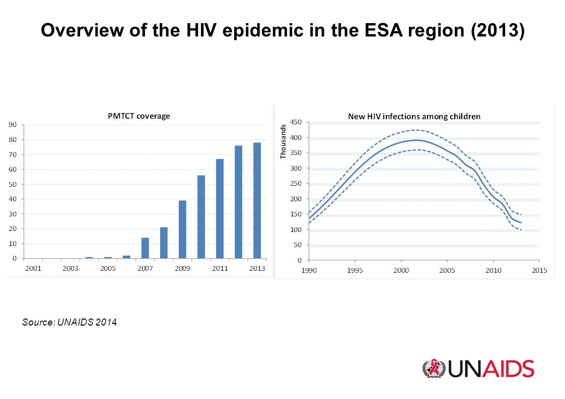 Overview of the HIV epidemic in the ESA region (2013)