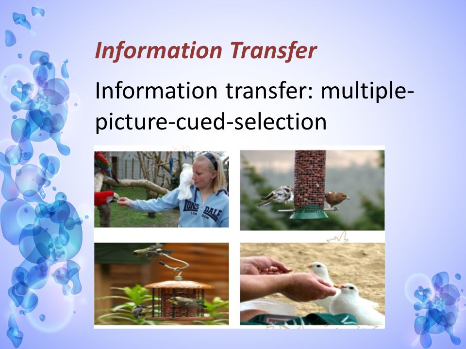 Information Transfer Information transfer: multiple-picture-cued-selection