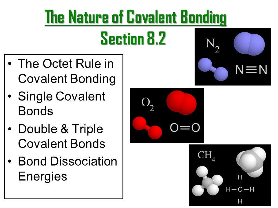 The Nature of Covalent Bonding Section 8.2