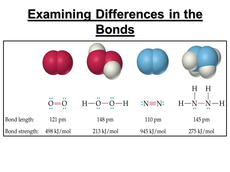 Examining Differences in the Bonds