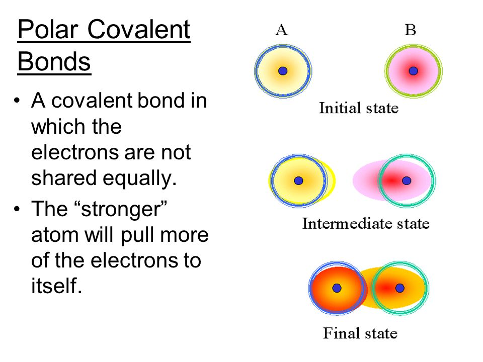 Polar Covalent Bonds A covalent bond in which the electrons are not shared equally.