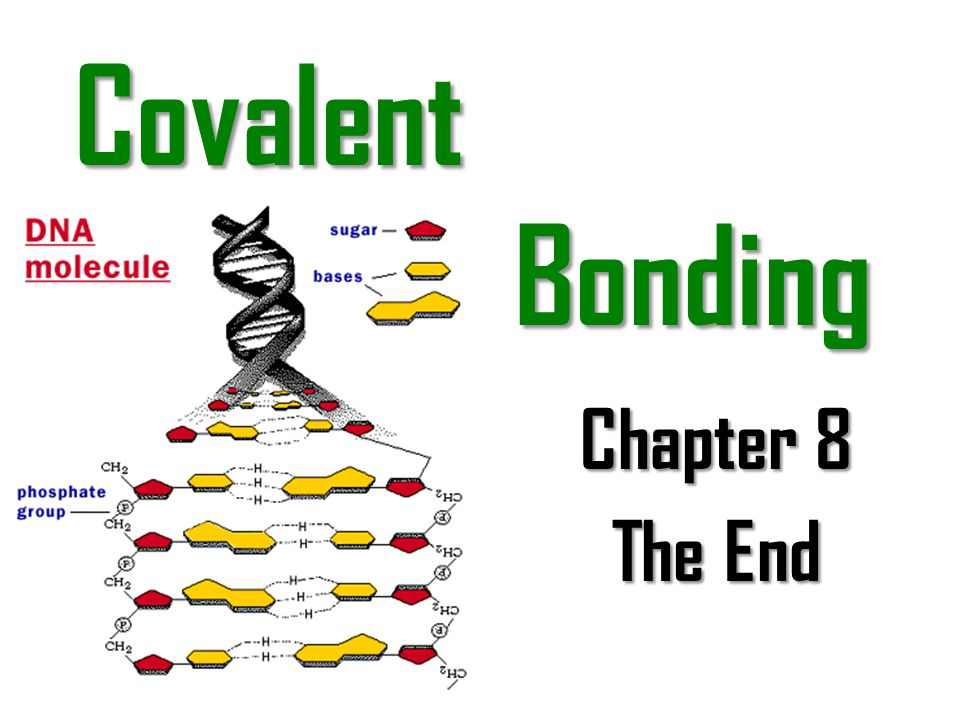 Covalent Bonding Chapter 8 The End