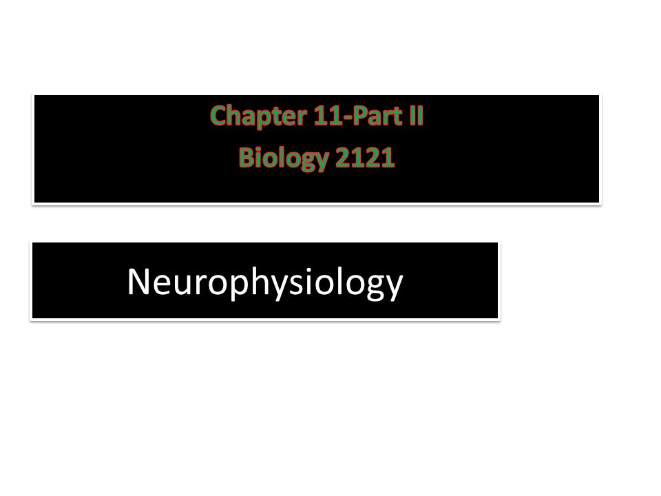Chapter 11-Part II Biology 2121