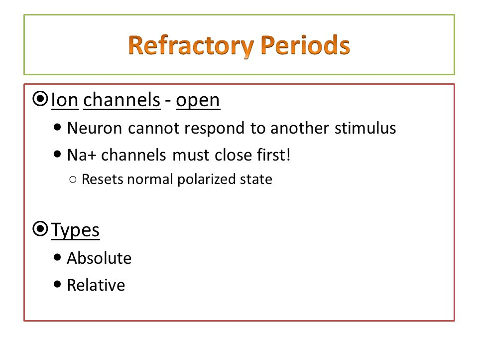 Refractory Periods Ion channels - open Types