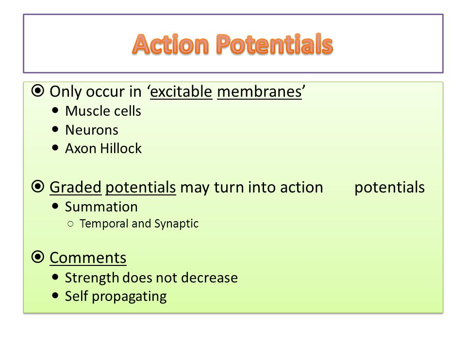 Action Potentials Only occur in 'excitable membranes'