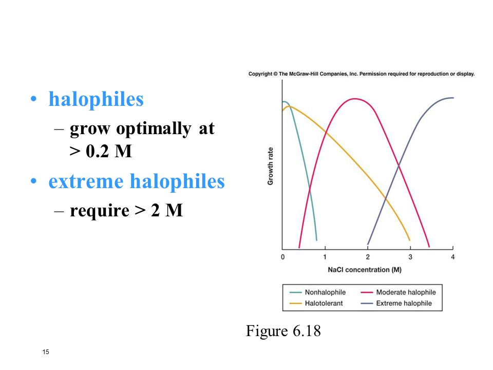 halophiles extreme halophiles grow optimally at > 0.2 M