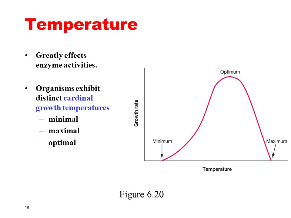Temperature Figure 6.20 Greatly effects enzyme activities.