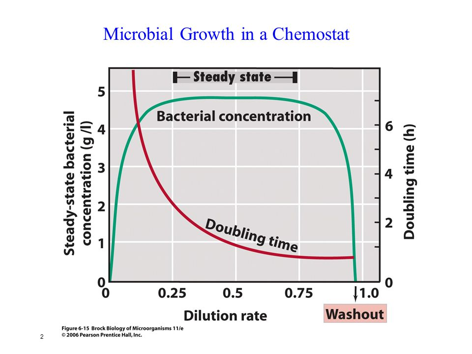 Microbial Growth in a Chemostat