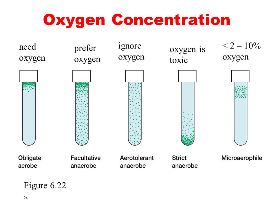 Oxygen Concentration need oxygen ignore oxygen < 2 – 10% oxygen