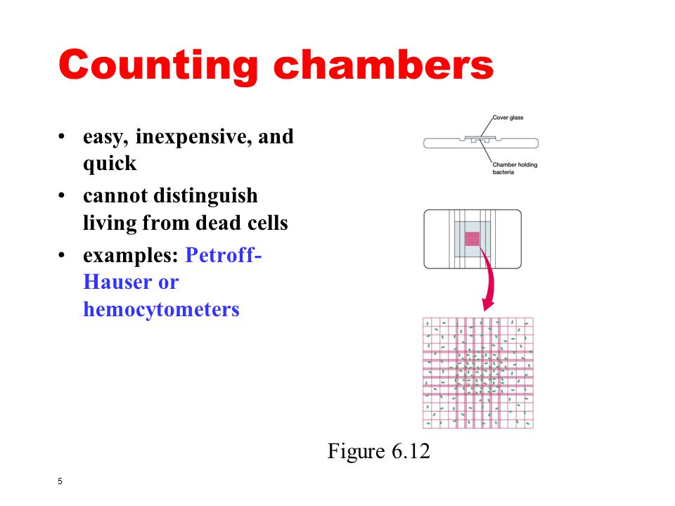 Counting chambers easy, inexpensive, and quick