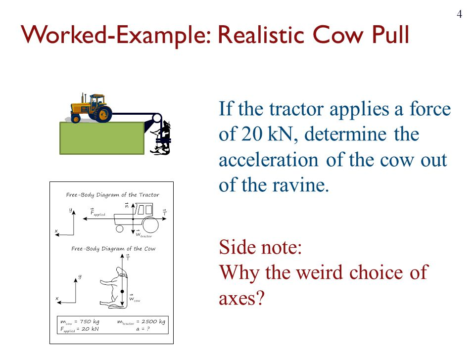 Worked Example%3A+Realistic+Cow+Pull general physics i day 10 friction forces & circular motion ppt