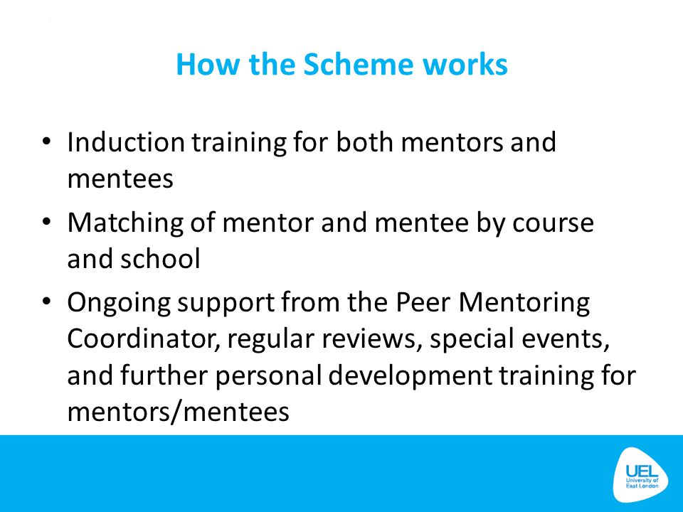 How the Scheme works Induction training for both mentors and mentees