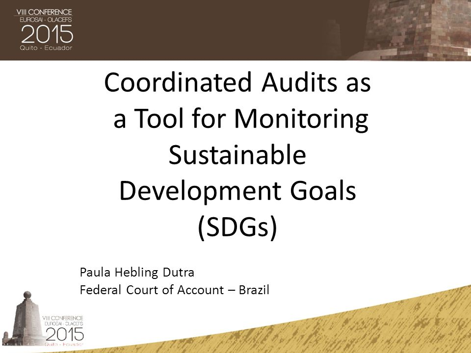 Coordinated Audits as a Tool for Monitoring Sustainable Development Goals (SDGs)