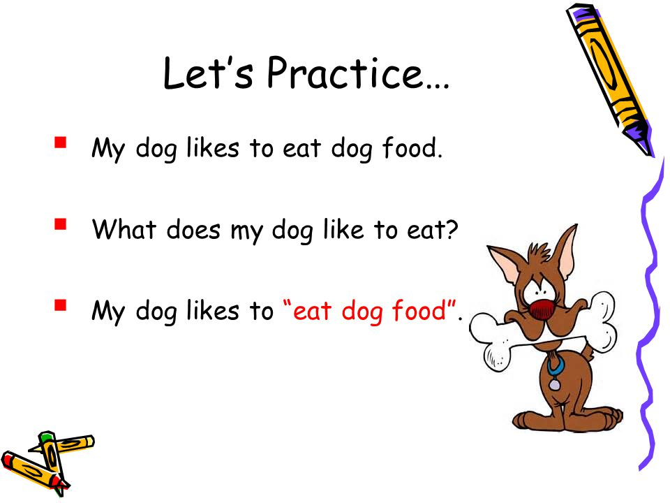 Let's Practice… My dog likes to eat dog food.
