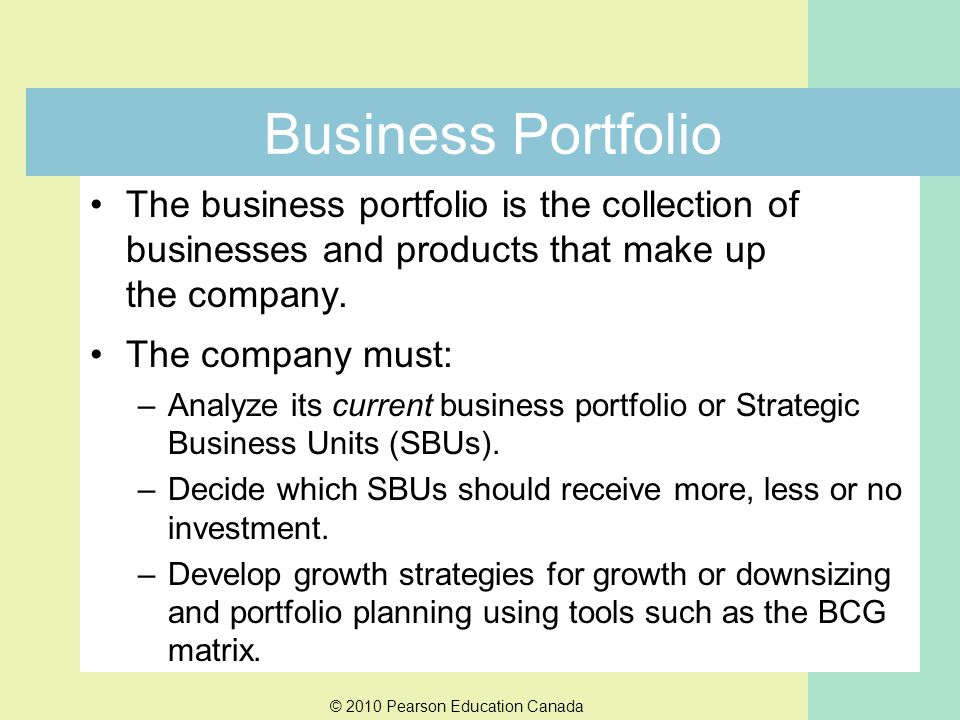 Business Portfolio The business portfolio is the collection of businesses and products that make up the company.
