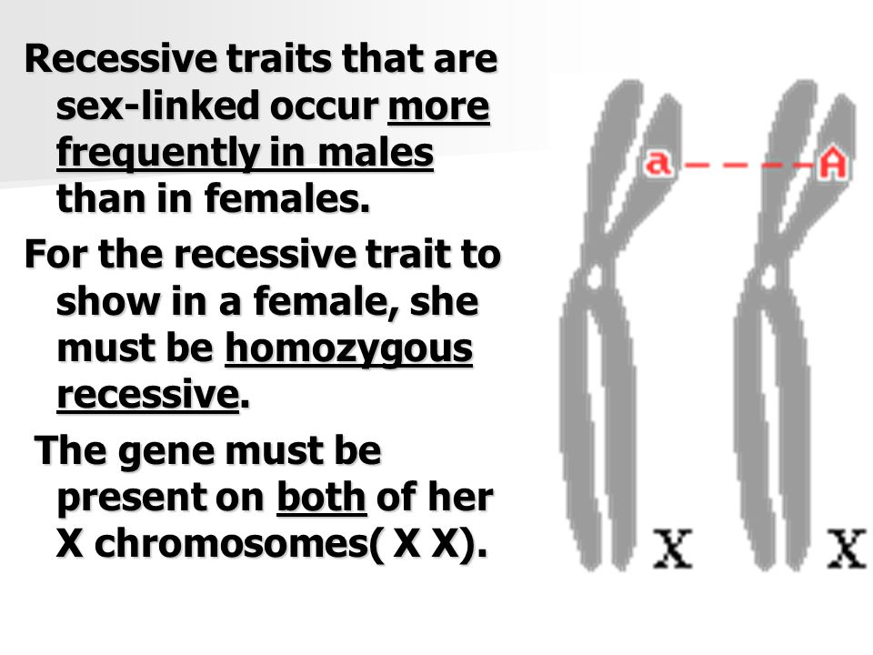 Sex Linked Recessive Inheritence