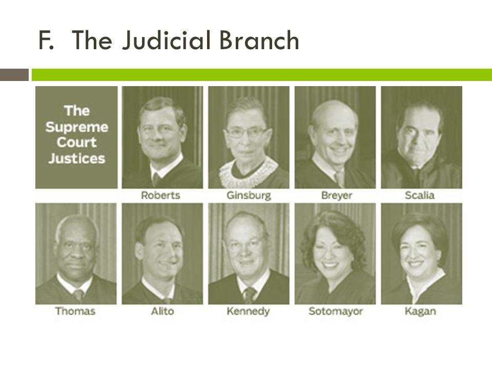 F. The Judicial Branch