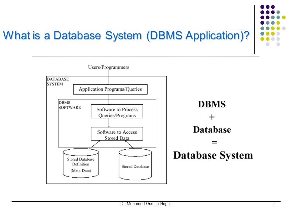 What is a Database System (DBMS Application)