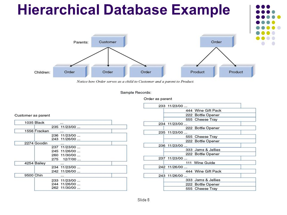 Hierarchical Database Example