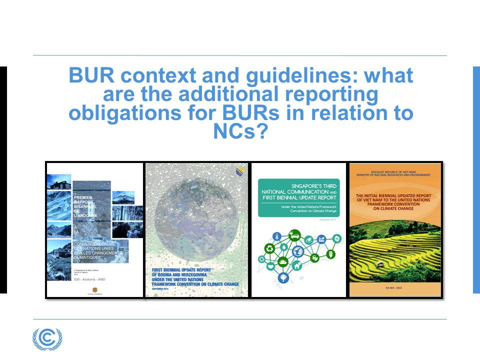 Presentation title BUR context and guidelines: what are the additional reporting obligations for BURs in relation to NCs