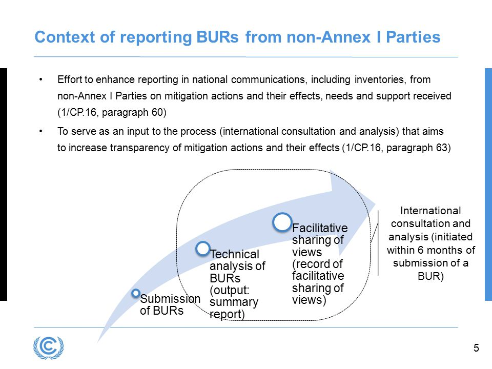 Context of reporting BURs from non-Annex I Parties
