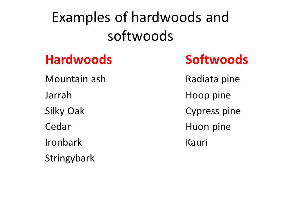 Hardwood new: hardwood trees examples.