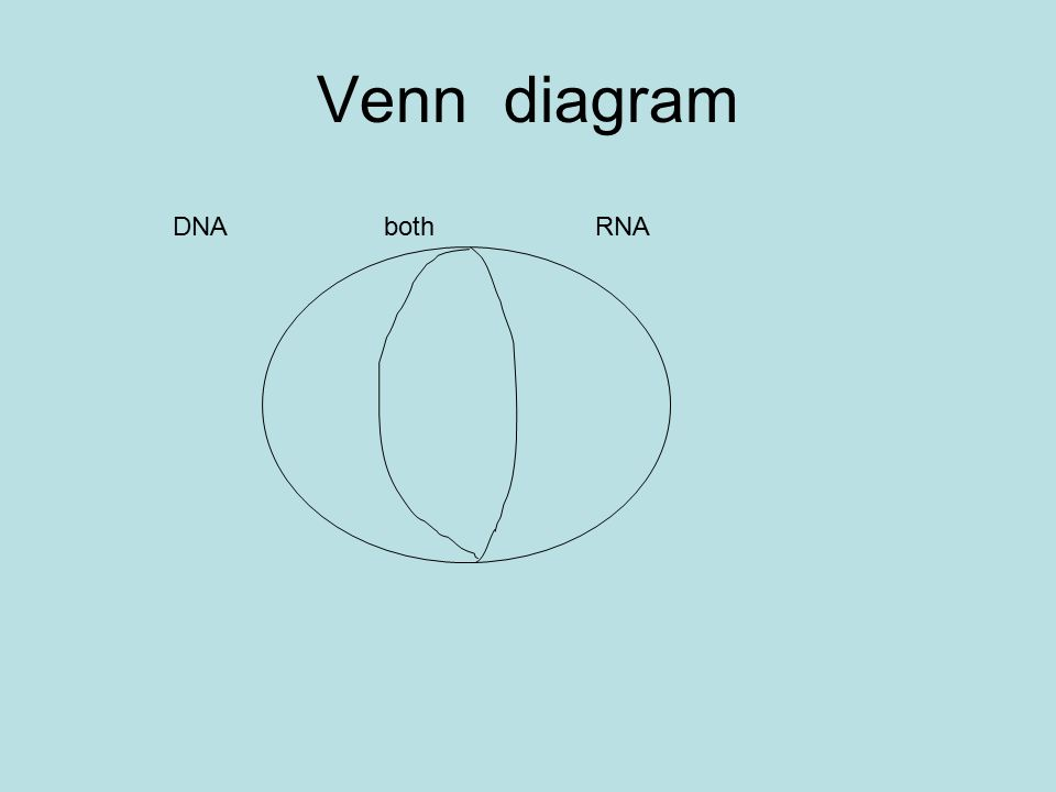 2 structure and function of dna