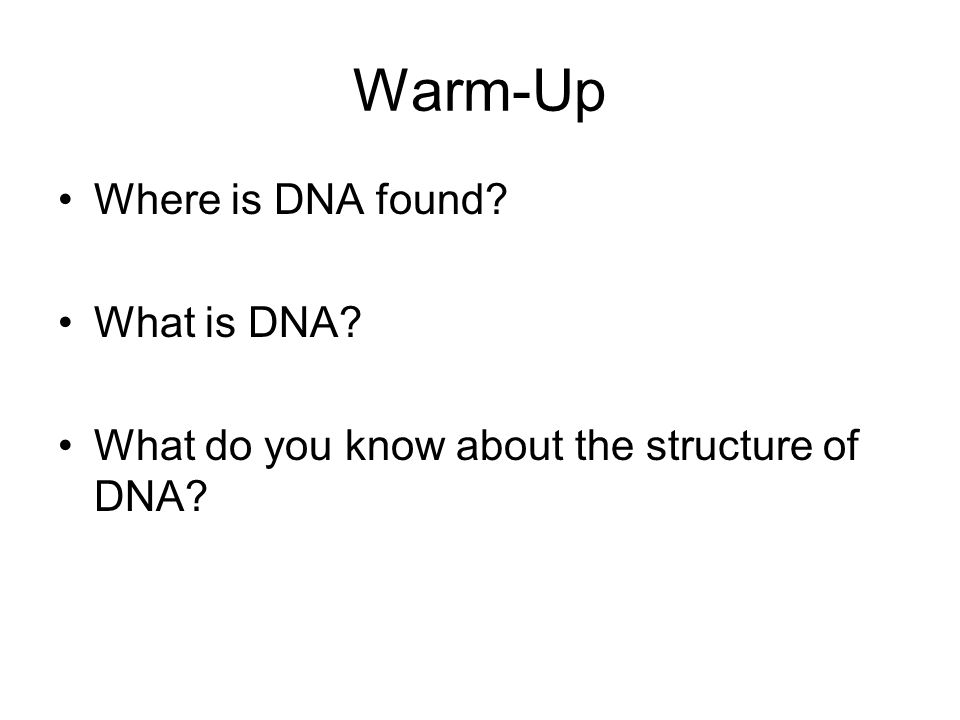 Warm-Up Where is DNA found What is DNA