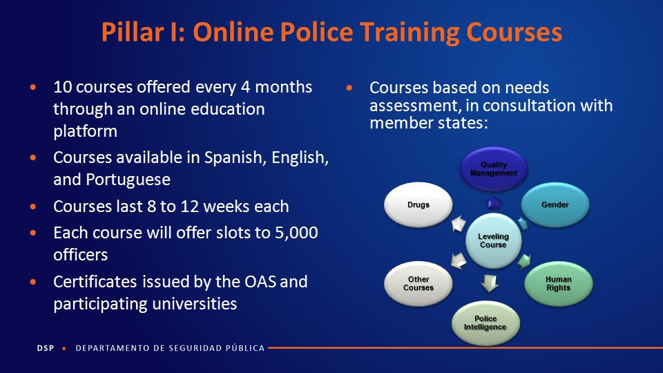 Pillar I: Online Police Training Courses