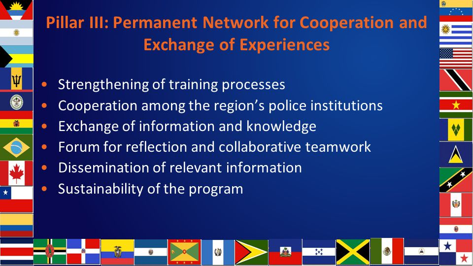 Pillar III: Permanent Network for Cooperation and Exchange of Experiences