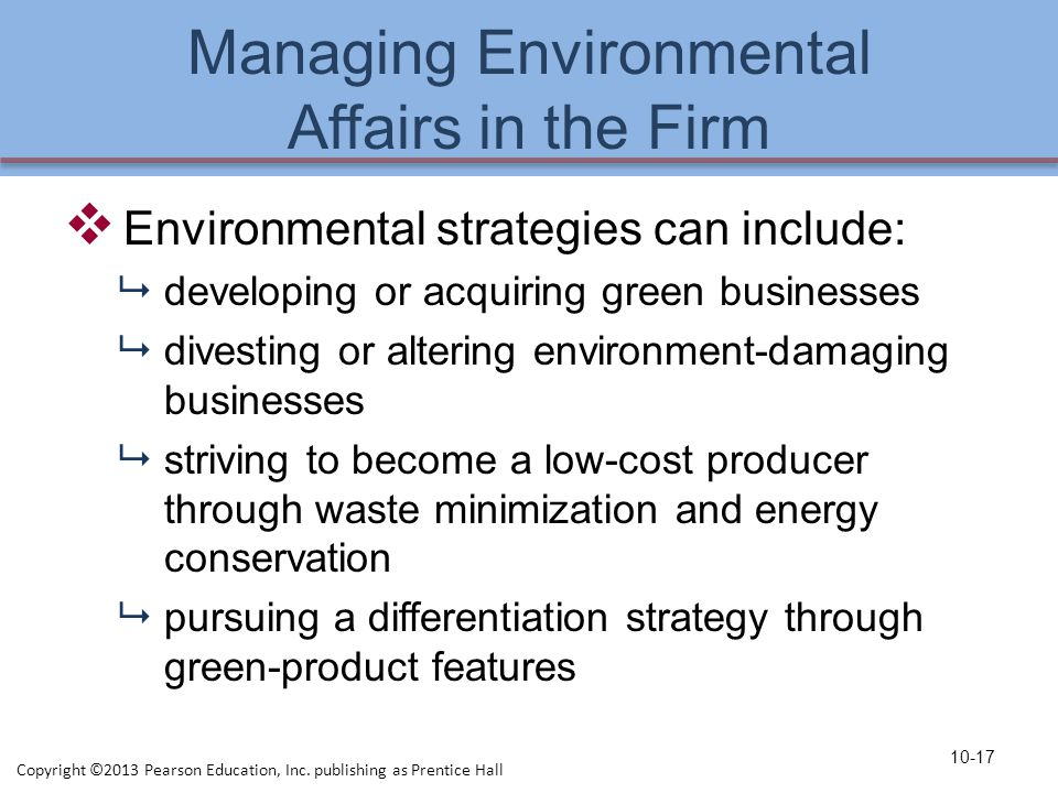 Managing Environmental Affairs in the Firm