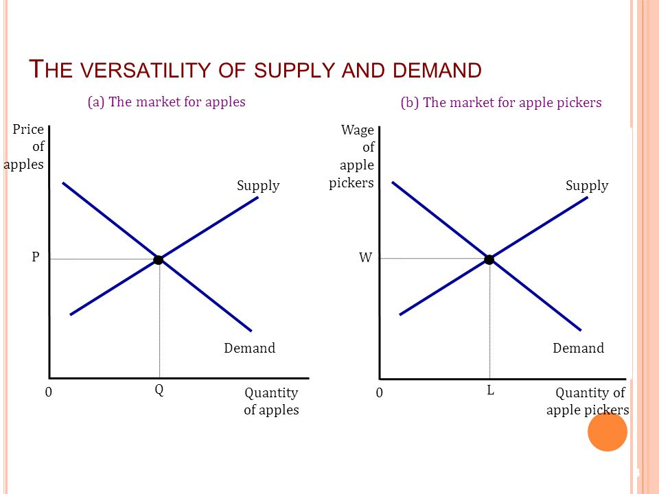 apple supply and demand analysis