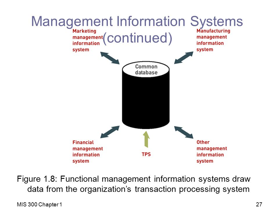 Management Information Systems (continued)