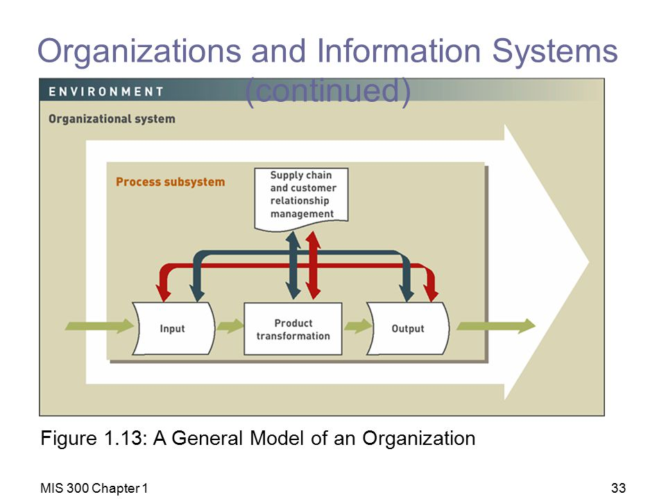 Organizations and Information Systems (continued)