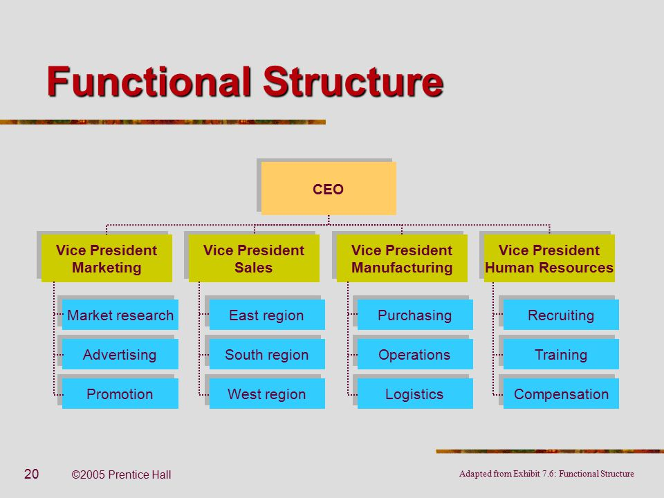 Organizational structure and design ppt video online download functional structure ceo vice president marketing vice president sales publicscrutiny Images