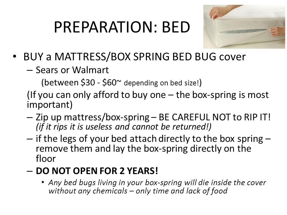 Charming 9 PREPARATION: BED ...