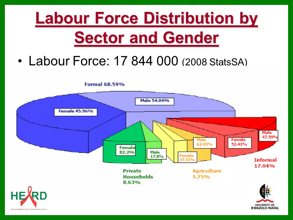 Labour Force Distribution by Sector and Gender