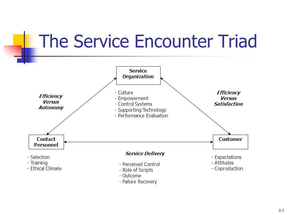 service encounter triad