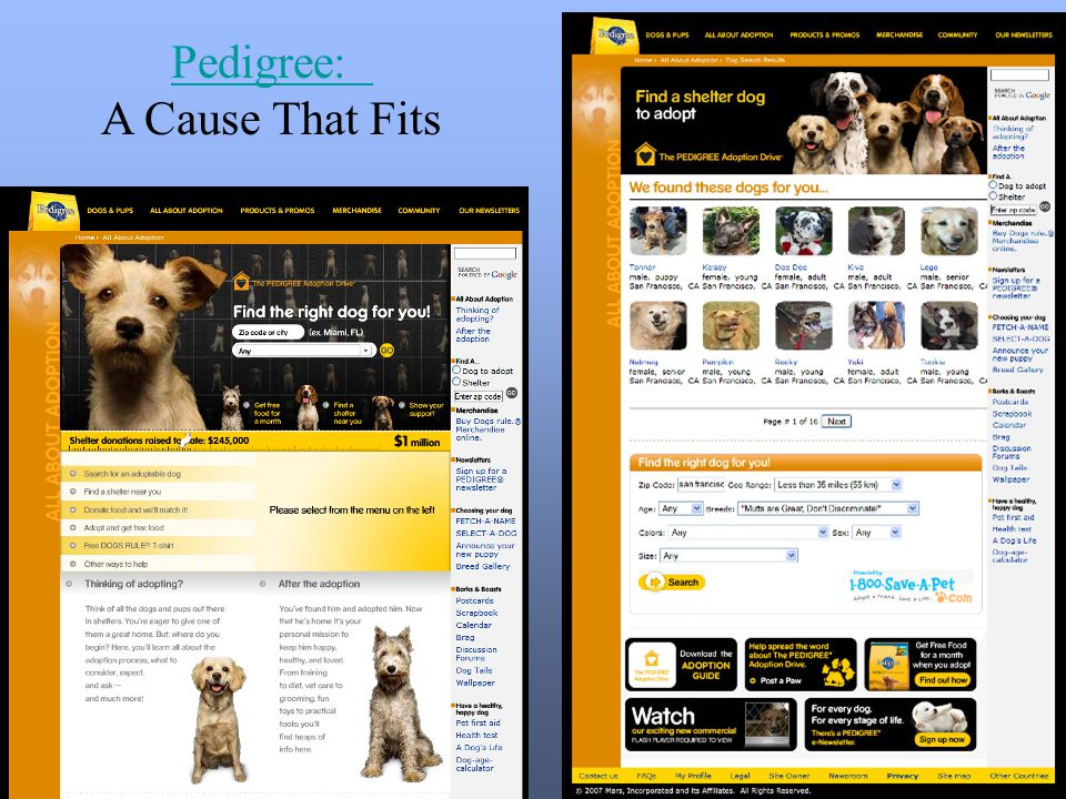 Pedigree: A Cause That Fits